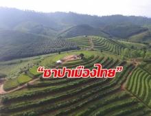 """Unseen """"พิษณุโลก"""" เที่ยวบ้านน้ำจวงฉายา """"ซาปาเมืองไทย"""" ชมทะเลหมอก นาขั้นบันได น้ำตกตาดปลากั้ง"""