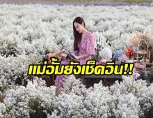 เช็คอิน! I Love Flower Farm ทุ่งดอกไม้เปิดฟินๆที่ จ. เชียงใหม่