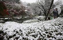 ชวนสัมผัสความหนาว ของหิมะในโตเกียวเดือน พ.ย.ครั้งแรกในรอบ 54 ปี