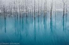 ภาพสวย! พาชมบ่อน้ำสีฟ้าสดที่ฮอกไกโด สวยเหลือเชื่อ
