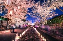 ฮิตตลอดกาล! ญี่ปุ่น คว้า อันดับ 1 ขวัญใจนักท่องเที่ยวไทย