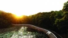 ชลบุรีจัดกิจกรรม เปิดเส้นทางปั่นจักรยานใหม่พื้นที่โครงการป่าสิริเจริญวรรษจากพระราชดำริ