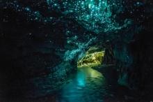 ยังกับเทพนิยาย..ถ้ำไวโตโมโกลว์วอร์ม (Waitomo Glowworm Caves)